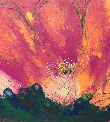 Orange Bloom.jpg