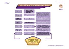 Estructura_de_la_LPRL.png