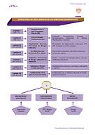 Estructura_del_RSP.png
