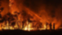 Bush fire Picture.jpg
