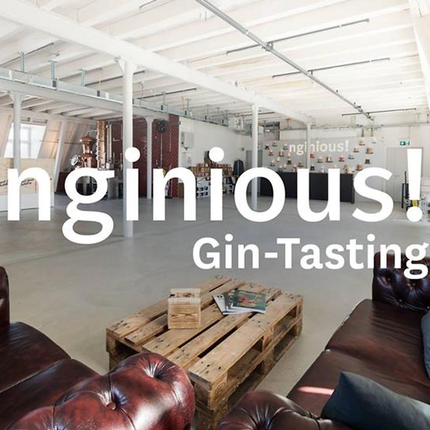 Gin-Tasting (Plus)