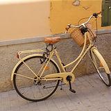 Bike - Copy.jpg