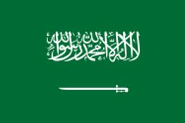 Saudi Arabia - Numbers