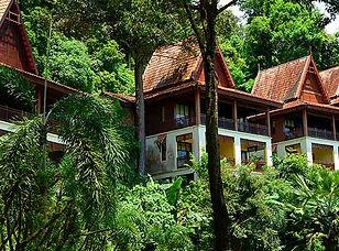 rainforest chalet.jpg