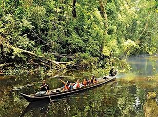 Taman_Negara_Tembeling_River.jpg