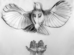 Bird with Hands