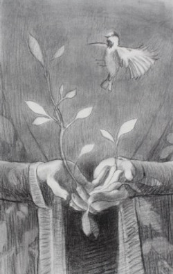 Daphne's hands
