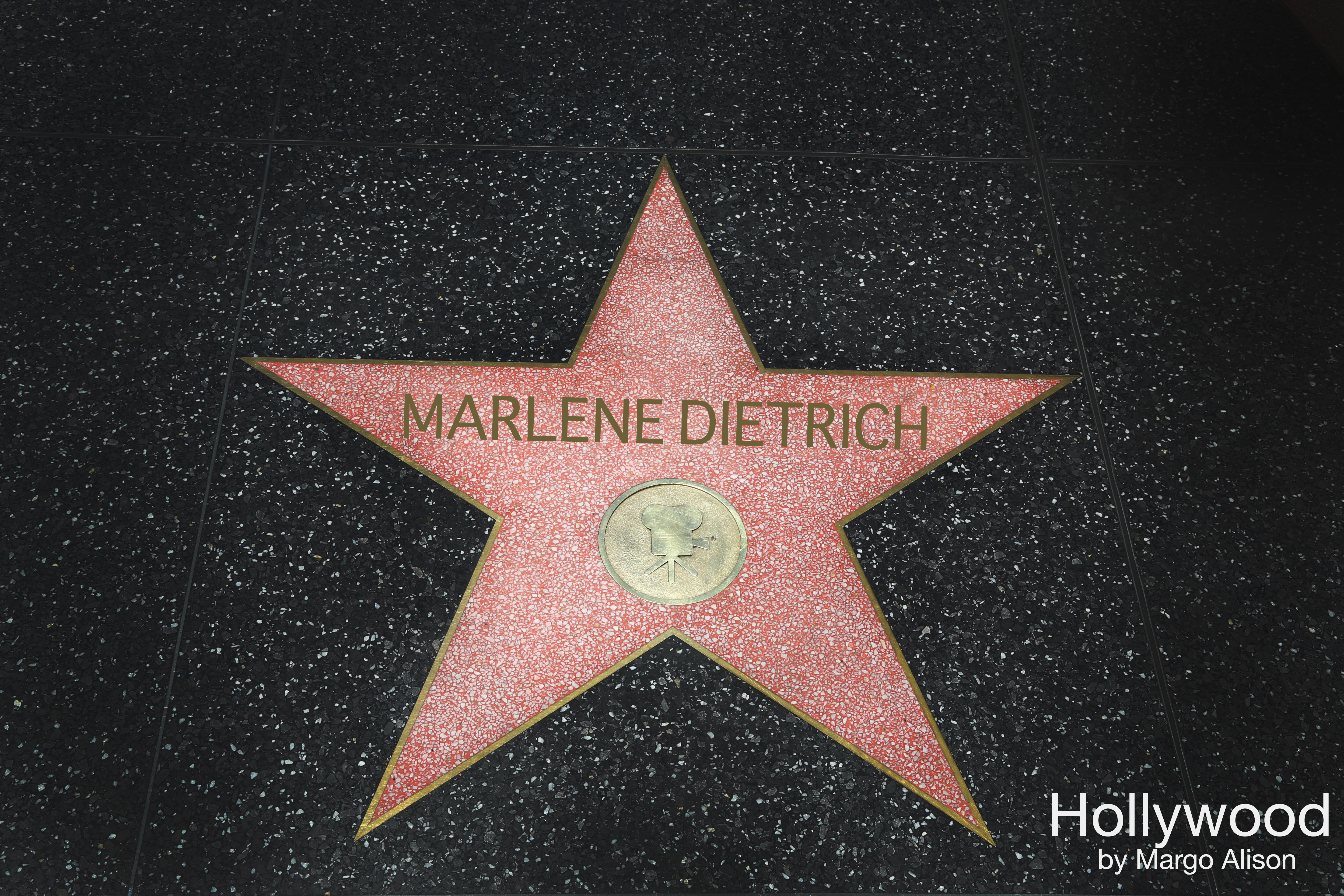 MARLENE DIETRICH hollywood star