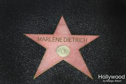 MARLENE DIETRICH hollywood star