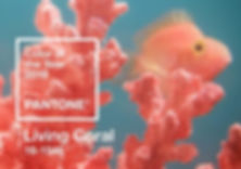 pantone-colour-of-year-2019-living-coral