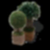 Árvores.png