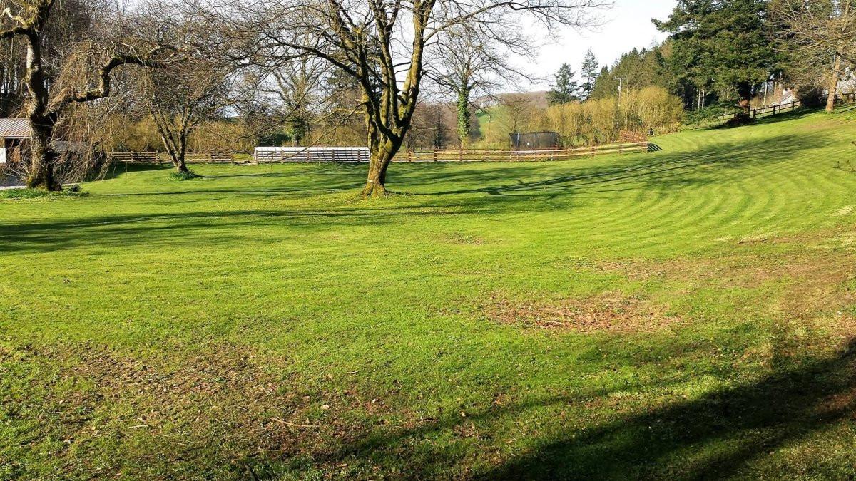 Cligwyn Manor Grounds