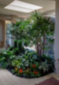 indoor plant care for interior plant design