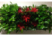 living wall Coachella Valley Palm Springs