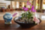 Benefits of Hote Indoor Plants lobby area