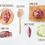 Thumbnail: Doggy Bag - Roast Lamb Dinner meal