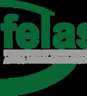 felase-40-year-logo.png