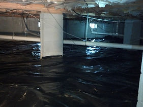 Crawl Space Vapor Barrier Underlayment, Dead animal removal in crawl space