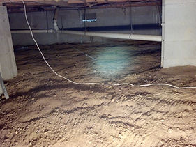 Animal under crawlspace, feces in crawlspace, Dead animal in crawlspace, Damaged ductwork from nuisance wildlife