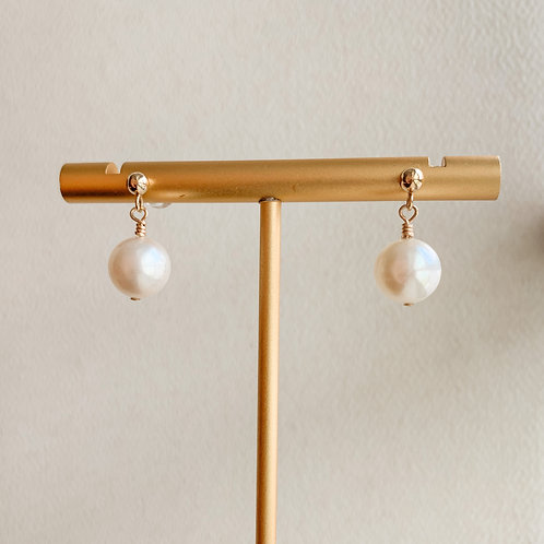 AVA | 14K Gold-Filled Akoya Pearl Earrings