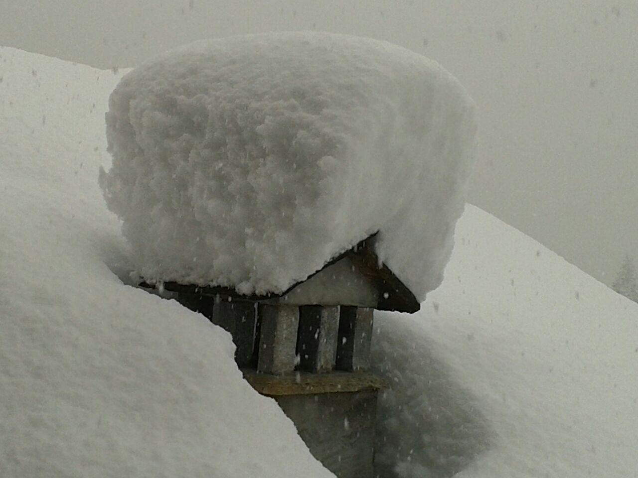 Quando Nevica Nevica!