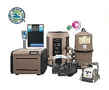 Hayward Filter System
