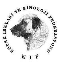 KIF_logo_2013.jpg
