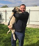 щенок кангала, купить щенка кангала, кангал Москва, кангалы Россия