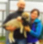 щенок кангала (анатолийская овчарка) 23 дня