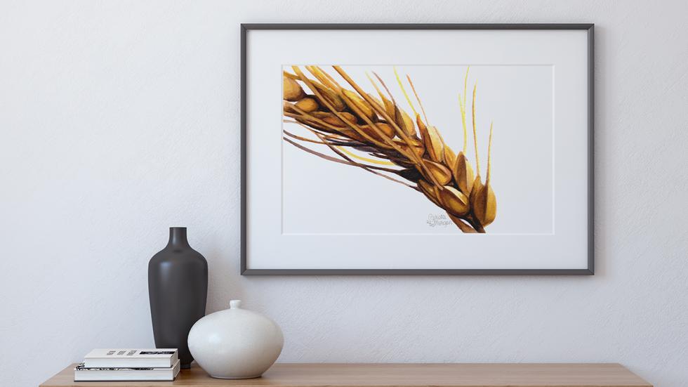 Golden Wheat Stalk