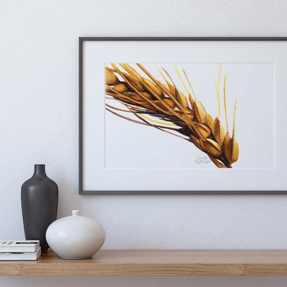 Golden Wheat Stalk