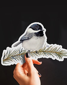 Chickadee Sticker, Watercolor Bird, Vinyl Stickers, Pine Branch, Animal Art
