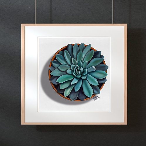 Watercolor Succulent Print, Top View in Terra-cotta Pot