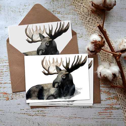 Moose Cards, Watercolor Notecards, Montana Artist Cards