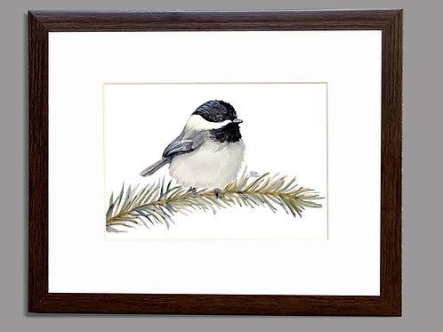 Chickadee, 8x10 FRAMED, Watercolor Bird Print, Matted, Gift