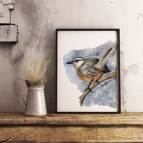Nuthatch Watercolor Print, Bird Perched on Branch, Realism