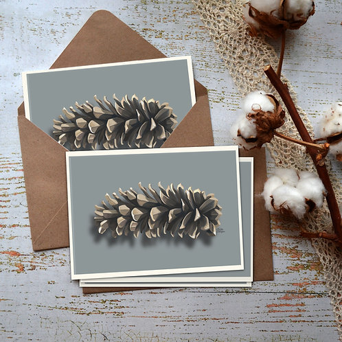 Pinecone Notecards, White Pine Cone, Card Set, Stationary, Realistic Art