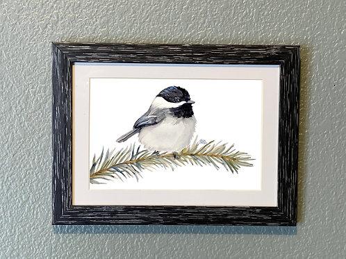 Chickadee, 5x7 Framed, Watercolor Bird Print, Matted, Gift