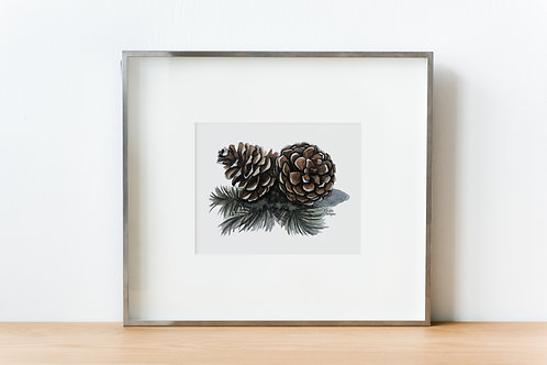 Pinecones and Needles, Watercolor Print