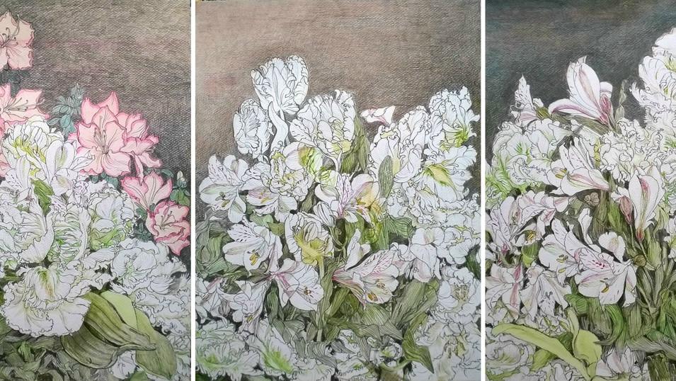 Lydia Lander | Blumenstück mit Alstroemerien, Tulpen und Azalee | 2014 | Tusche und Farbstift auf Papier | Triptychon | 72 x 32 cm | Preisauf Anfrage 
