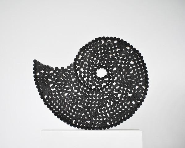 Livia Kubach, Michael Kropp | Ammoniten