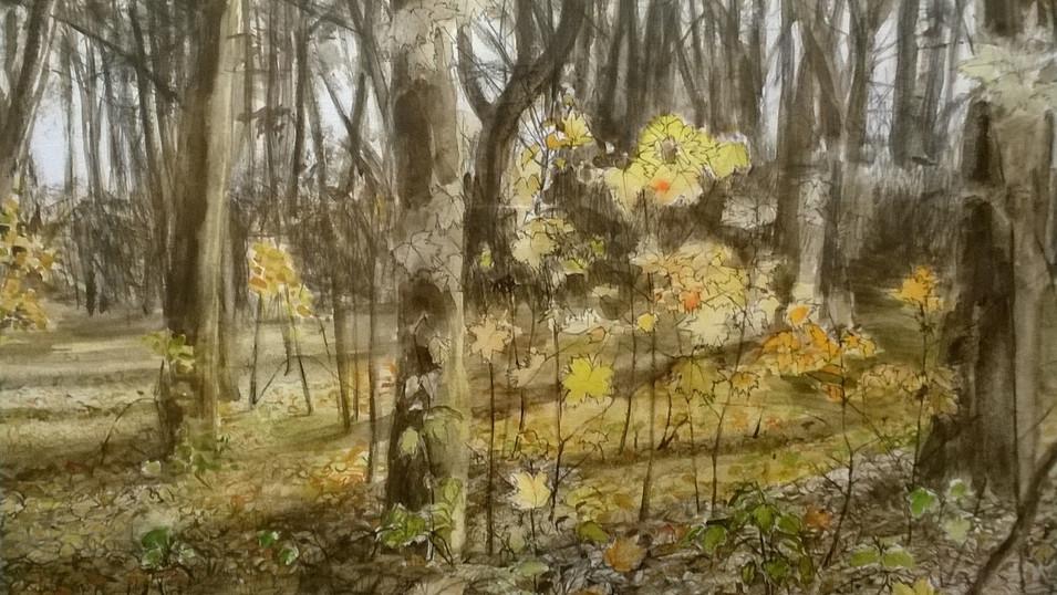 Lydia Lander | Blumenstück mit Gerbera | 2015 | Tusche und Farbstift auf Papier | Triptychon 90 x 42 cm | Preis auf Anfrage