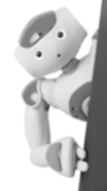 NAO Peeking Grey Scale.png