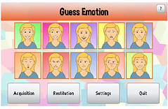 guess emotion.PNG