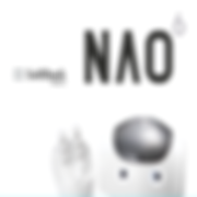 nao6.png