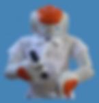 NAO Roboduxi Performer Image.PNG