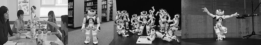 NAO Library Strip Photo.png