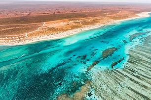 Ningaloo Reef aerial .jpg