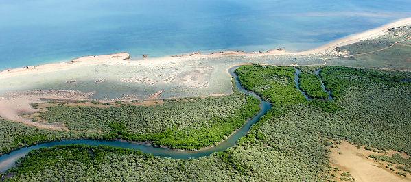 wilderness-island-fishing-cover.jpg