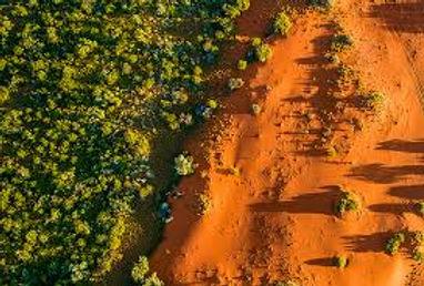 bullara aerial.jpeg